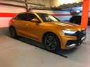 Rent-a-car Audi Q8 50 TDI Quattro in Menton, photo 1